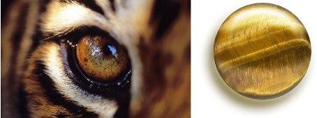Магические свойства тигрового глаза