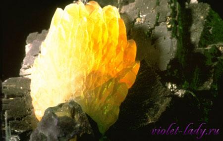 Магическая сила желтых камней
